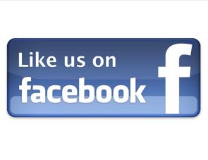 facebook logo 01