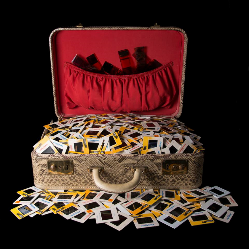 Shoebox PR photo. ellen cantor png
