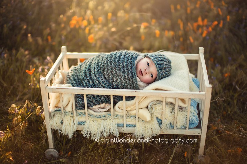 aliciainwonderlandphotography_f_newborn-3-copy-002